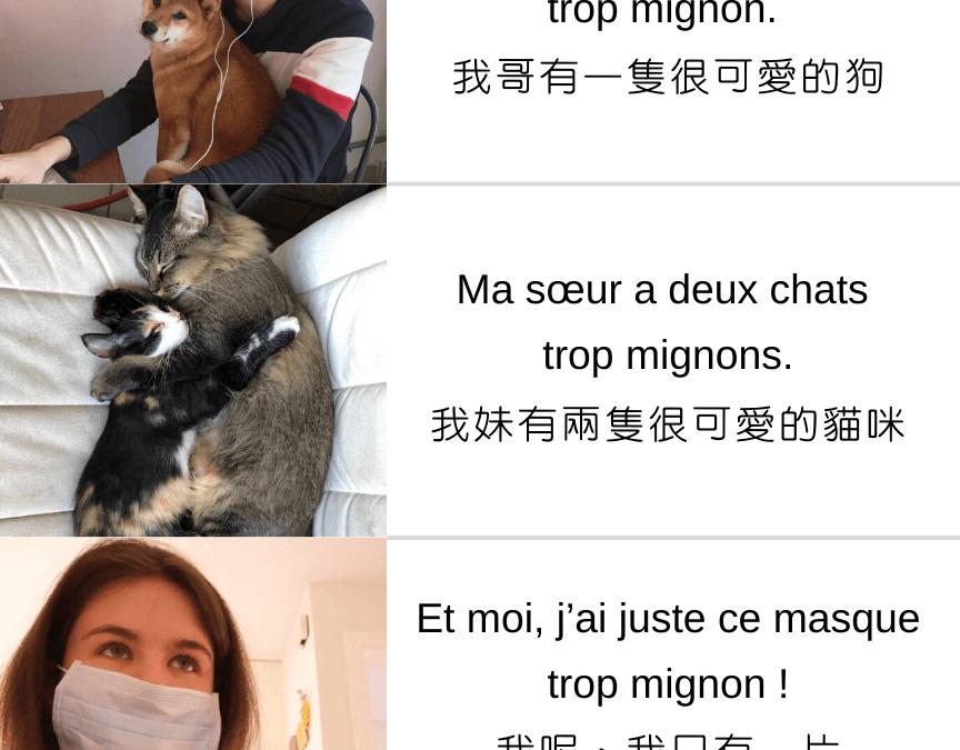 【法文小教室|可愛的口罩 · KiKi在台日記】 